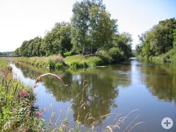 Donauzusammenfluss im Schlosspark