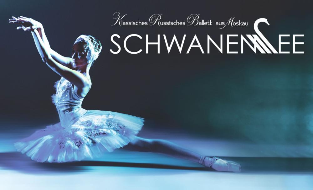 Schwanensee Titelbild