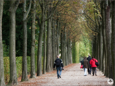 Fotoexkursion Schlosspark Schwetzingen